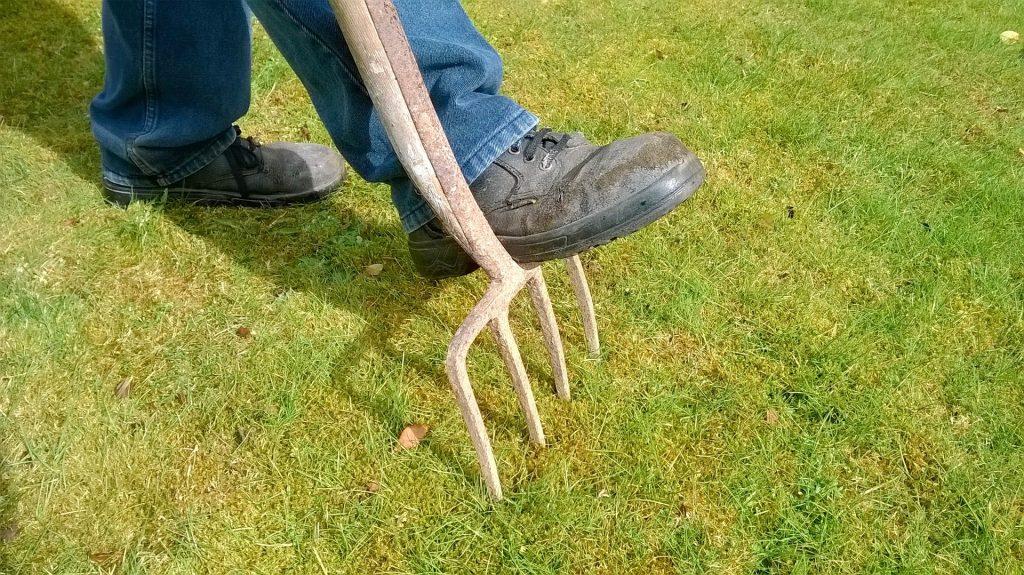 Tuin onderhoud tips